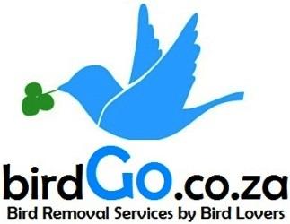 Bird Control Bird Removal Bird Eviction Centurion South Africa